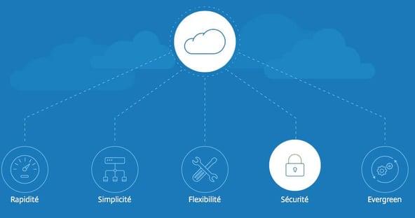 citrix_cloud_schema.jpg